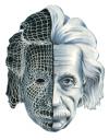 Einstein Knowledge Head